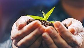 Direito e Gestão Ambiental